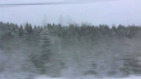 High-speed train is moving through the forest. HD 720p: High-speed train is moving rapidly through the winter woods, lifting the veil of snow, Russia (POV stock video