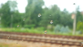 High speed train rain. Close up of window glass with rain drops high speed train stock footage