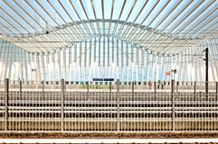 High Speed Train Station in Reggio Emilia, Italy. REGGIO EMILIA, ITALY - August 13, 2013: view of Mediopadana High Speed Train Station in Reggio Emilia, Italy Stock Photos