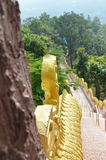 High stairway through wood up to Buddhist temple on mountain Stock Photos