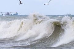 High storm surges. Stormy sea. High storm surges Royalty Free Stock Photo