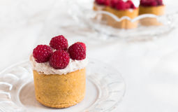 High tartlets with cream and raspberries, selective focus Stock Photography