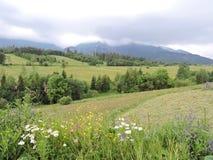 High Tatra mountains, Slovakia Stock Photos