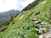High Tatra Mountains, Slovakia Royalty Free Stock Photo
