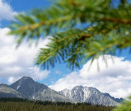 The High Tatras. Vief of mountains - The High Tatras in Slovakia with blurred branch stock photos