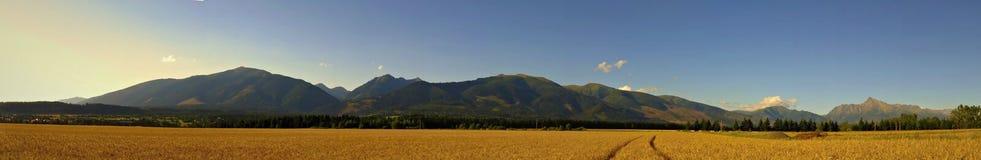 High Tatras panorama Royalty Free Stock Images