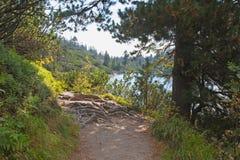 High Tatras - The path round of Popradske Pleso lake Stock Photography