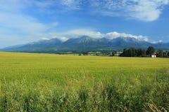 High Tatras scenery Stock Photography