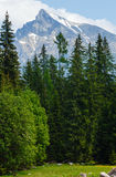High Tatras (Slovakia) spring view. Stock Photos