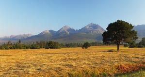High Tatras Stock Image