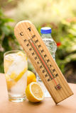 High temperature on a summer day Royalty Free Stock Photography