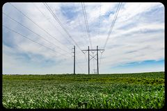 High voltage/tension electric power line through corn or maize farm. High voltage tension electric power line through corn fields in omaha nebraska with stock images