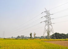 High tension electric  supply pole Stock Images