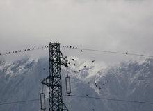 High tension lines Royalty Free Stock Image
