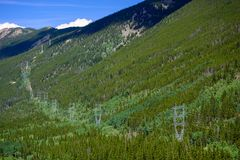 High Tension Power lines on a Mountain Covered in Pine Trees.  royalty free stock photo