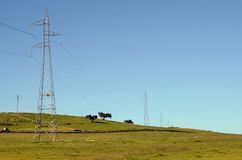 High tension towers-horizontal. Landscape with high tension towers royalty free stock image