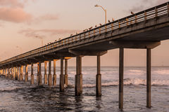 High Tide at Ocean Beach Fishing Pier Royalty Free Stock Photo