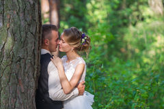 High trees and kiss of the married couple Stock Photos