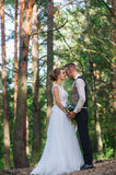 High trees and kiss of the married couple Royalty Free Stock Photography
