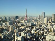 Tokyo by day with Mount Fuji stock images