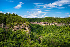 High view of Little River Canyon Federal Reserve Stock Images