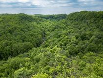 High view of lush green river valley with trees reaching far int Royalty Free Stock Photos