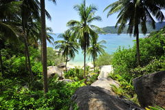 High viewpoint island with coconut tree Royalty Free Stock Photo