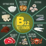 Vitamin B12 Image. High vitamin B12 Foods. Healthy seafood, meat, fish, crab, cottage cheese and oysters. Vector illustration in diagram style on a green Stock Photos