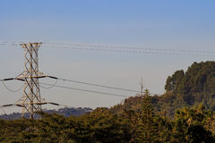 The high voltage electric pole Stock Photo