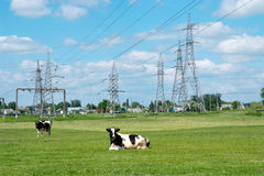 High-voltage electricity line Royalty Free Stock Photos