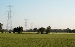 High Voltage Electricity Poles. Power, Connect. High Voltage Electricity poles on a field with wheat crop stock images