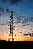 High voltage electricity pylon on sunset Royalty Free Stock Photo