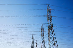 High-voltage industrial pylons for electricity distribution royalty free stock images