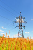 High voltage line and blue sky Royalty Free Stock Photos