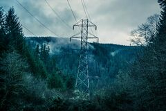 High voltage line in forest Stock Image
