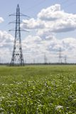 High-voltage line in medow Royalty Free Stock Photos