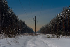 High-voltage line in night winter forest Stock Photography