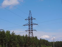 High-voltage line. High-voltage power transmission line passing through the pine forest Stock Image