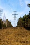 The high-voltage pole in the forest. Line current transfer. Forest Stock Photos