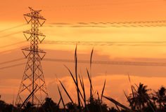 High voltage poles. Evening sunset Stock Images