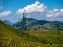 High voltage post power poles on a sunny summer meadow high voltage tower switzerland alps. High voltage post power poles high up in the mountains high voltage stock photo