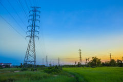 High-voltage post tower in Jasmine rice field at twilight time royalty free stock images