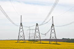 High-voltage power line. On the background of a flowering field Stock Image