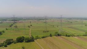 High voltage power line. Electricity pylons bearing power supply across agricultural land with sown green, rice fields in countryside. aerial view power pylons stock footage
