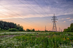 High voltage power line in flower meadow Stock Photo