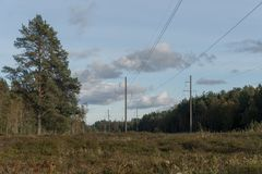 High-voltage power line in a forest royalty free stock images