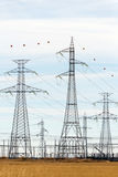 High voltage power line. High tension towers near a power distribution station Stock Image