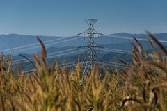 High voltage power line to transfer electricity power. To the remote place Royalty Free Stock Images