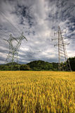 High voltage power lines. Above wheat field just before storm Stock Images