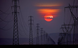 High voltage power lines. At sunrise Royalty Free Stock Image
